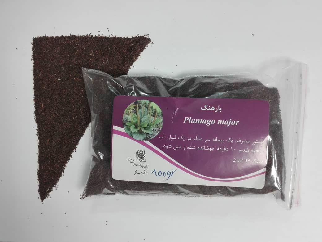 بارهنگ Plantago major