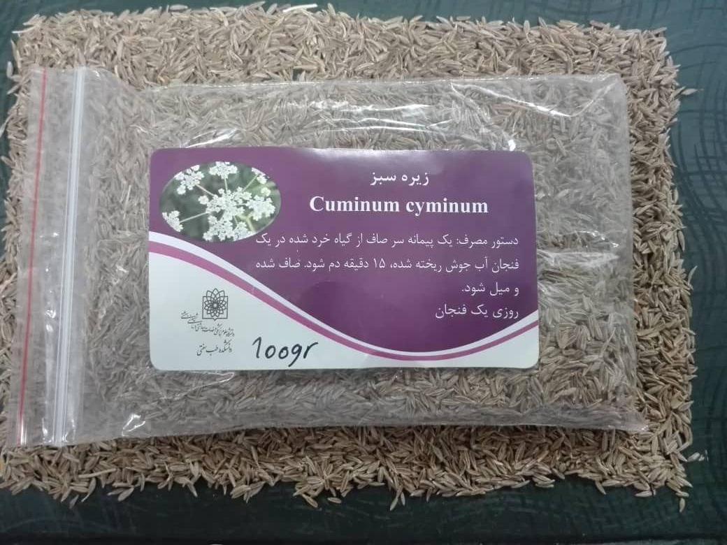 زیره سبز Cuminum cyminum